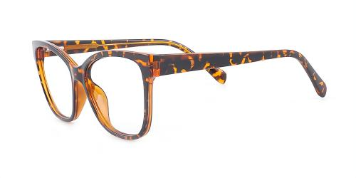 Designer Cateye Large Eyeglasses