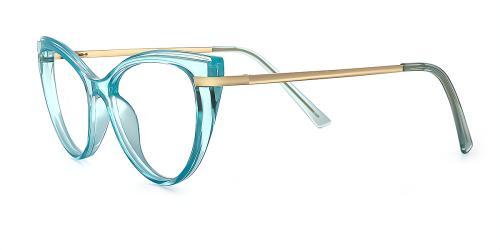 Gorgeous Clear Horn-Rimmed Eyewear